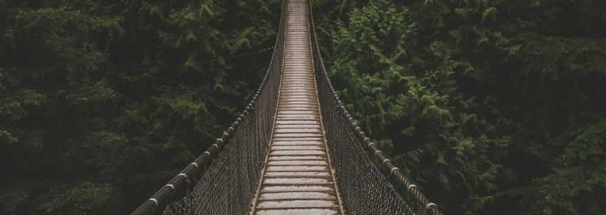 Rope Bridge across a jungle
